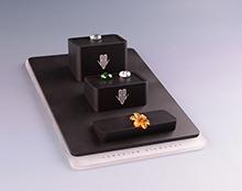 珠宝展示座